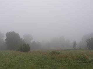 mgłaki2