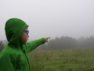 mgłaki4