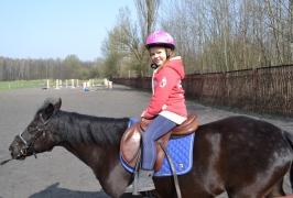 konie olivia