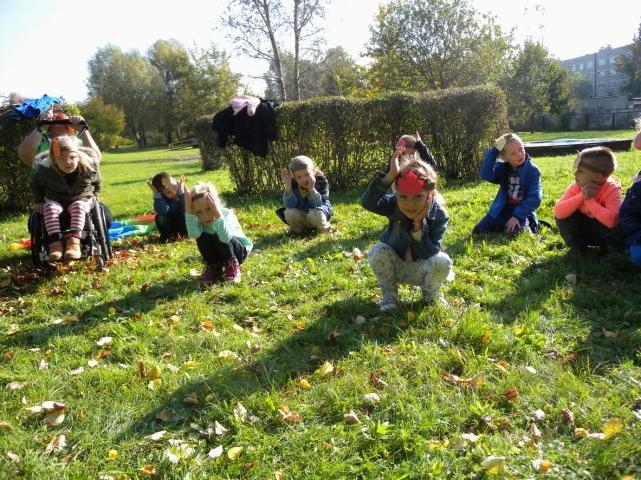 małe sadzonki w ogrodzie