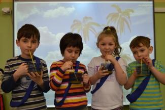 tropiki drużyna niebieska