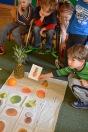 tropiki owoce etykiety2