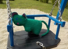 cat on the swing