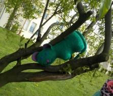 cat ont he tree 2