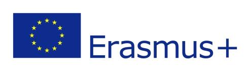 eu-flag-erasmus_vect_pos